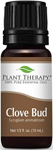 Plant Therapy Clove Bud Essential Oil. 100% Pure, 10 ml.