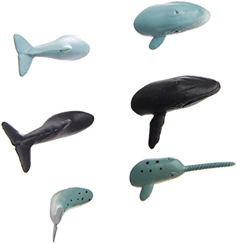 Kikkerland Shark Butt Magnets, Set of 6 (MG64) 41f7un0HCpL