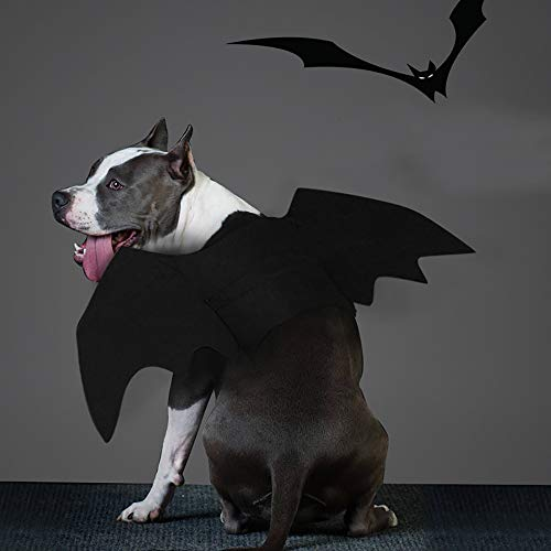 Glumes Bat Wing Pet Harness/Costume Halloween Dog Cat Costume for Pet Cats Dogs Bat Wings Pets Wings Black Cool Puppy Kittens Black Bat Transfiguration Halloween Dog Clothes (L, Black) -