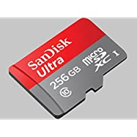 Professional Ultra SanDisk 256GB Samsung Galaxy Note 8.0 MicroSDXC card with CUSTOM Hi-Speed, Lossless Format! Includes Standard SD Adapter. (UHS-1 Class 10 Certified 95MB/s)