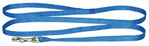 Hamilton Snag Proof Cat Braided Leash, 3/8-Inch by 4-Feet, Berry Blue