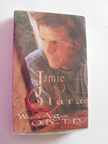 Jamie O'hara What's a Good Ol' Boy to Do Audio - Ol Jamie
