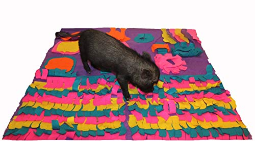 AZ Micro Mini Pigs Pig Activity Rooting Mat - 35