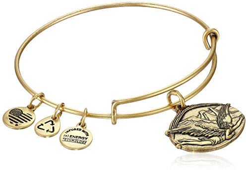 Alex and Ani Guardian of Freedom Expandable Wire Bangle Bracelet, 2.5