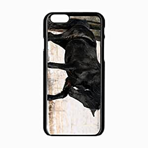 iPhone 6 Black Hardshell Case 4.7inch horse leg Desin Images Protector Back Cover