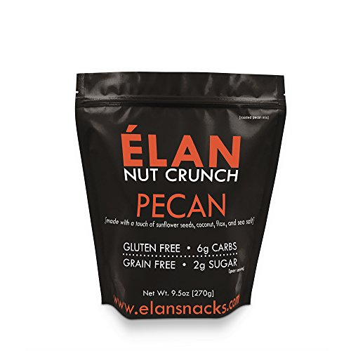 ELAN Roasted Candied Pecans Lightly Salted Granola - Paleo Low Carb Keto Treat - Healthy Nut, Seed, Coconut and Ground Flax Cereal - Paleo Low Carb Keto Dessert Treat (9.5 Oz Travel Mini Bag)