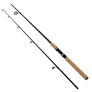 Shimano solora 2 piece spinning rod for Amazon fishing rods