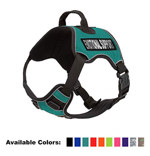 Dogline Quest No-Pull Dog Harness with Emotional Support Reflective Removable Patches Soft Comfortable Dog Vest with Quick Release Dual Buckles Black Hardware and Handle 21 to 25 inches Teal (Quest Vest)