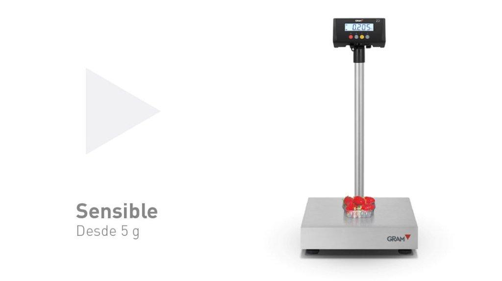 Balanzas industriales Gram Precision modelo ZMissil F4-150 (150Kg/20g) dimensiones del plato 800x600mm modelo 2017: Amazon.es: Industria, empresas y ciencia