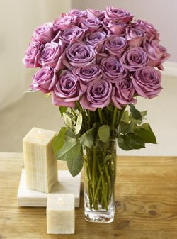Two Dozen Lavender Roses by Organic Bouquet