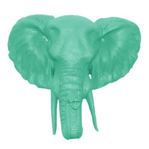 resin elephant head - 9