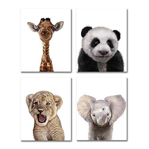 Set of 4 Baby Animal Prints | 8x10 Portraits Include: Panda Elephant Giraffe Lion | Baby Nursery Decor Wall Prints Nursery Art Nursery Decor Baby Kids Room Wall Art | UNFRAMED