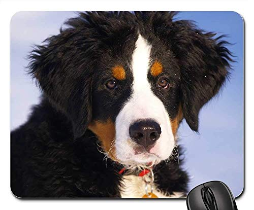 Gaming Mouse Pads,Mouse mat,Bernese Mountain Dog Puppy Animal Dog Canine Pet