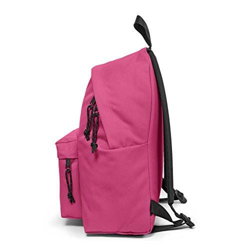 24 Eastpak Backpack L cm Pink 40 Extra Black Pak'R Padded qXvrXE
