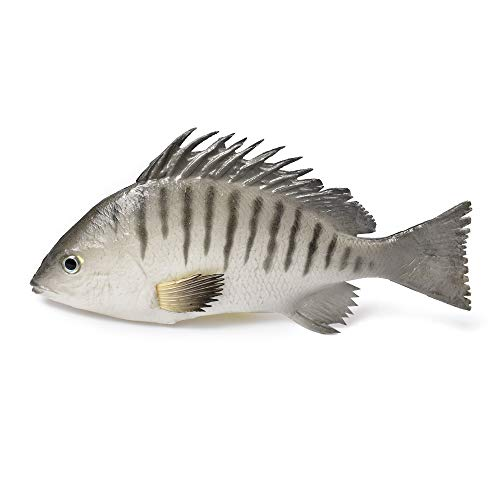 - Hagao Artificial Gray Snapper Simulation Fish Decoration Fake Toy Model Playset Sea Creatures Lifelike Stick to Fish Tank for Home Party Christmas Display 9.5
