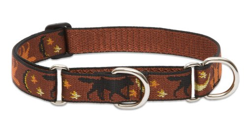 "LupinePet Originals 1"" Shadow Hunter 15-22"" Martingale Collar for Medium and Larger Dogs"