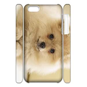 QSWHXN Customized 3D case Pomeranian for iPhone 5C