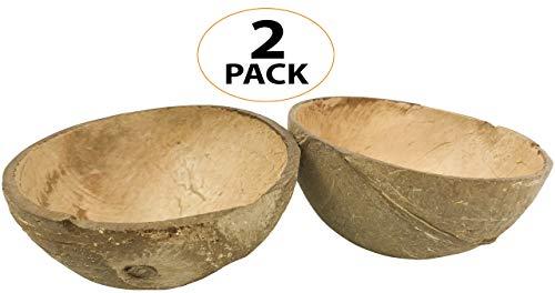 - Bonka Bird Toys 2055 Pk2 Coconut Cup Flat Base Parrot Natural Food Seed Water Bowl Fiber Shell nest Craft Item Parakeet Cockatiel Conure Foot Talon