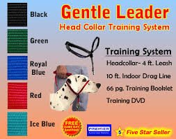 Premier Gentle Leader Quick Release System (Petite, Red)