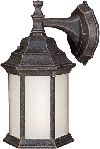 - Forte Lighting 17004-01-28 1 Lt Fl Cast Al Outdoor Lantern In Painted Rust