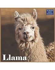 Llama Calendar 2022: Official Alpaca South American Camelid Calendar 2022, 16 Month Calendar 2022