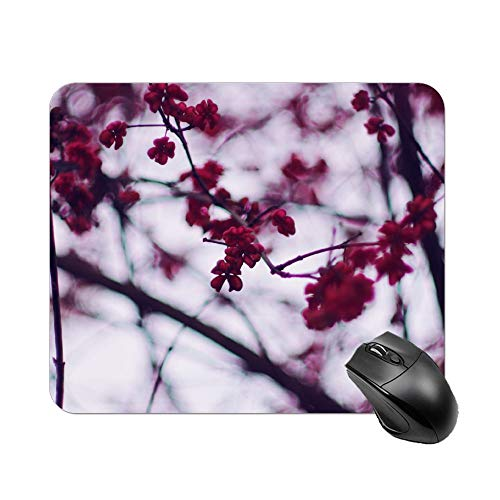 Yishour Mouse Pad Selective Focus Photography of Cherry Blossom Mousepad Non-Slip Rubber Gaming Mouse Pad Rectangle Mouse Pads for Computers Laptop]()
