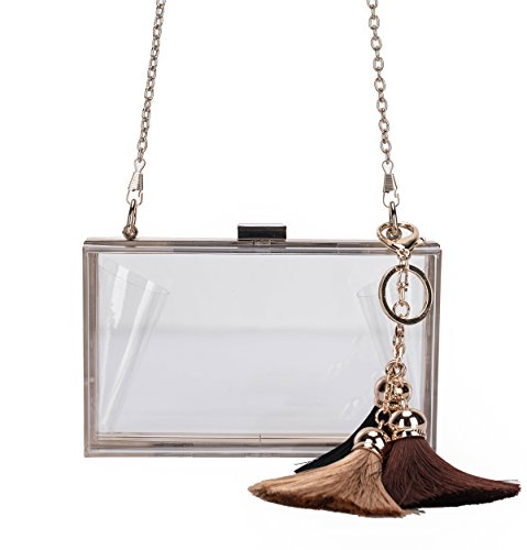 Lam Gallery Womens Acrylic Clear Purses NFL Stadium Approved Bag Girls Prom Clutch Handbags See Through Plastic Bags Perspex Transparent Clutch Mini Wallets Crossbody Shoulder Bags-Tassel