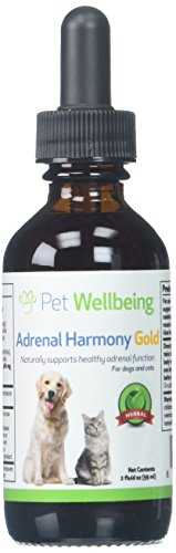 Pet Wellbeing - Adrenal Harmony Gold For Dogs- Natural Support for Adrenal Dysfunction and Cushing's - 2 Ounce ( 59 (2 Ounce Wisdom Natural)