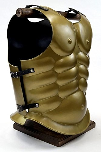 Armor Venue Golden Matte Muscle Armor - Greek Breastplate One Size Fit All - Gold