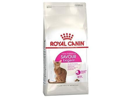 Royal Canin Exigent 35/30 Savour Gato 2 kg: Amazon.es: Productos para mascotas