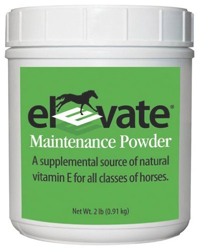 KENTUCKY PERFORMANCE PROD 044097 Elevate Maintenance Powder Supplement for Horses, 2 lb by KENTUCKY PERFORMANCE PROD