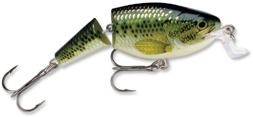 Rapala Jointed Shallow Shad Rap 7 Fishing Lure, Baby Bass, 2-3/4-Inch (Best Topwater Lures Largemouth Bass)