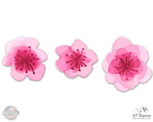 Cherry Blossoms Set of 3-2.5
