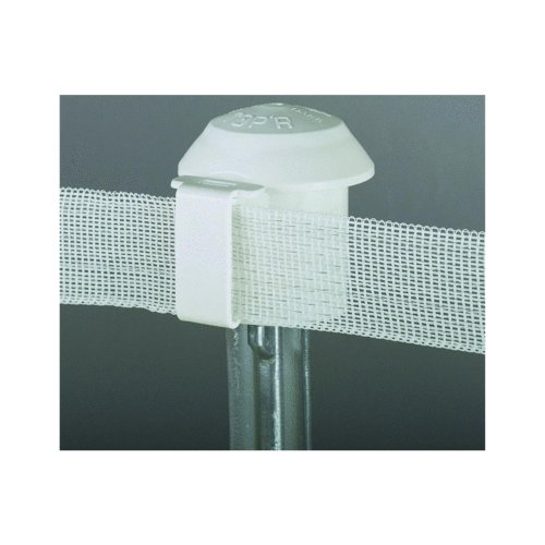 Dare T-Post Top Safety Insulator (Pack of 10)