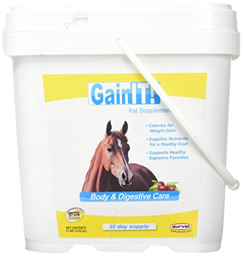Durvet Gain It Fat Supplement Body and Digestive Care For Horses, 8 Pound Container