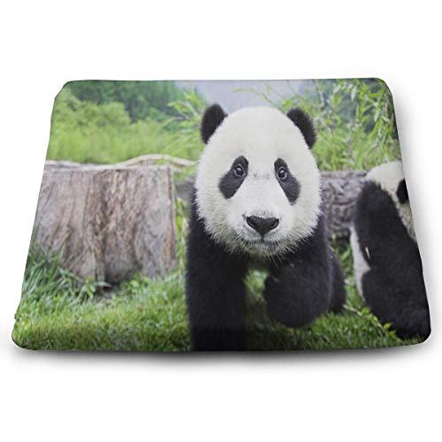 Seat Cushion Cute Black and White Panda Chair Cushion Custom Personalized Offices Butt Chair Pads for Cars