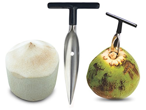 - Stord Coconut Opener for Fresh Green Young Coconut Water - Works With Peeled Thai Young White Coconuts - Open in Seconds Super Safe Easy and Fast