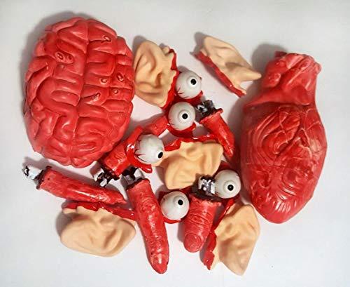 Bloody Body - Nikki's Knick Knacks 17 Piece Plastic