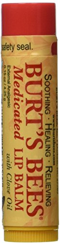 Burt's Bees Burt's Lip Care Medicated Lip Balm with Clove Oil 0.15 oz. tube Lip Balm ()