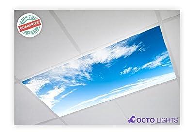 Cloud 004 2x4 Flexible Fluorescent Light Cover