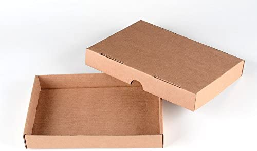 Pack de 10 cajas | Gem y minerales de almacenamiento | Museo colección de cajas para clasificar su roca | Geología minerales gemas, Flat 20x14x3cm R0 10 pcs: Amazon.es: Hogar