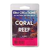Coral Reef - Scented All Natural Soy Wax Melts - 6