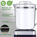 MOSAIC Electric Food Processor with Stainless Steel