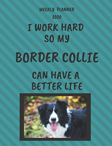 Border-Collie-Weekly-Planner-2020-Border-Collie-Lover-Gifts-Idea-For-Men-Women-Funny-Weekly-Planner-For-Pug-Lovers-With-To-Do-List-Notes-Sections