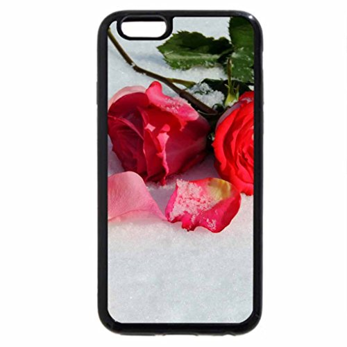 iPhone 6S Case, iPhone 6 Case (Black & White) - Shadows Of Winter Roses
