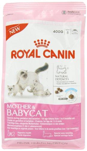 Feline Hn Mother&babycat34 400