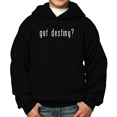 Teeburon Got Destiny? Boy Hoodie