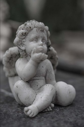 Stone Cherub Statue Journal