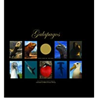 Galapagos Both Sides of the Coin