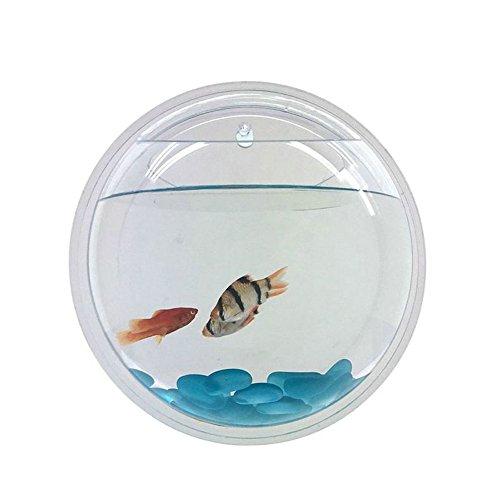 Acrylic Aquarium Mounted Terrarium Decoration product image